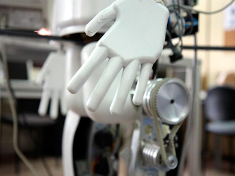 Sector robotica